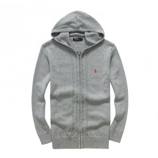 Ralph Lauren Homme 8031 Pull a Capuche With Full Zip Gris